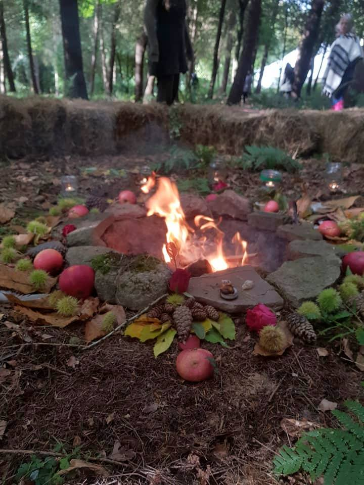 Camp fire at the woodland retreat
